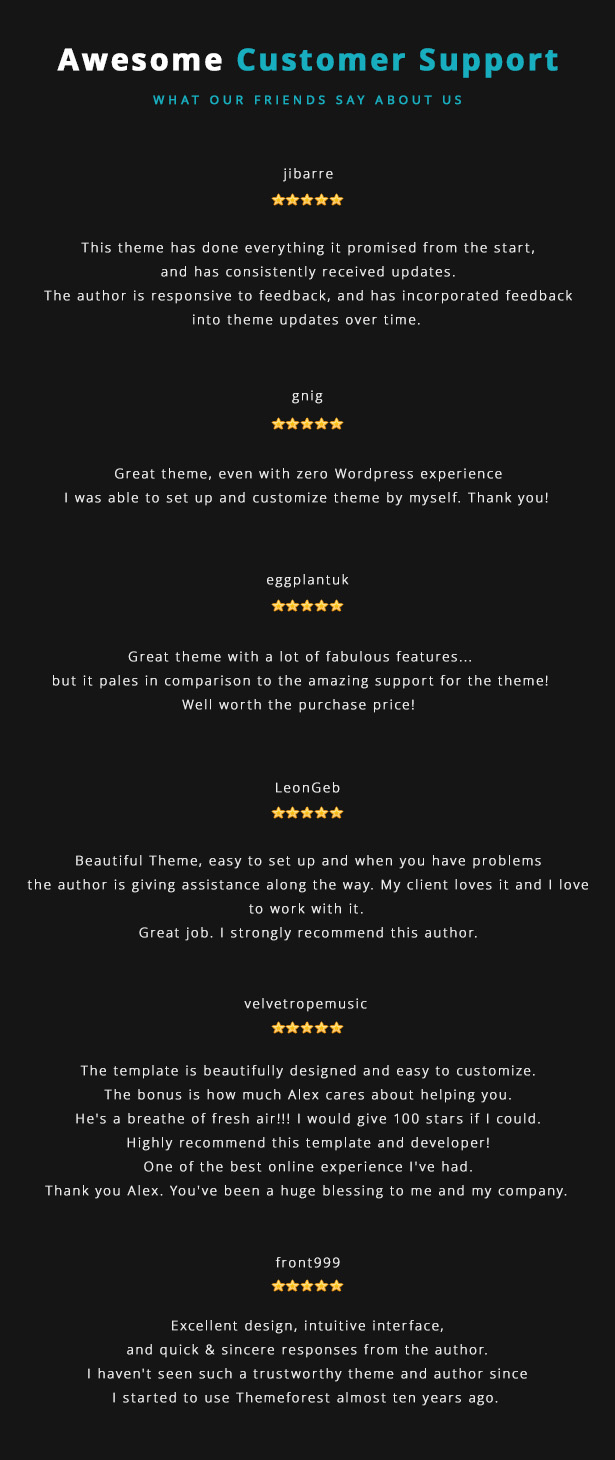 Lucille Music WordPress Theme - Awesome Customer Support